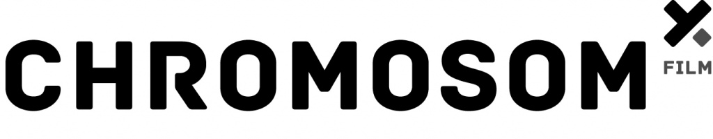 Logo Chromosom Film